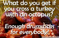 Crossing a turkey with an octopus